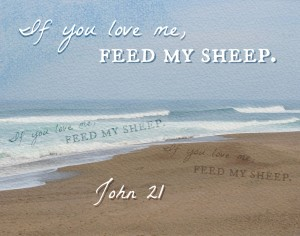 If you love me, feed my sheep...